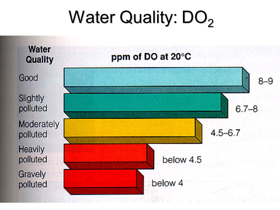 Water Quality: DO 2
