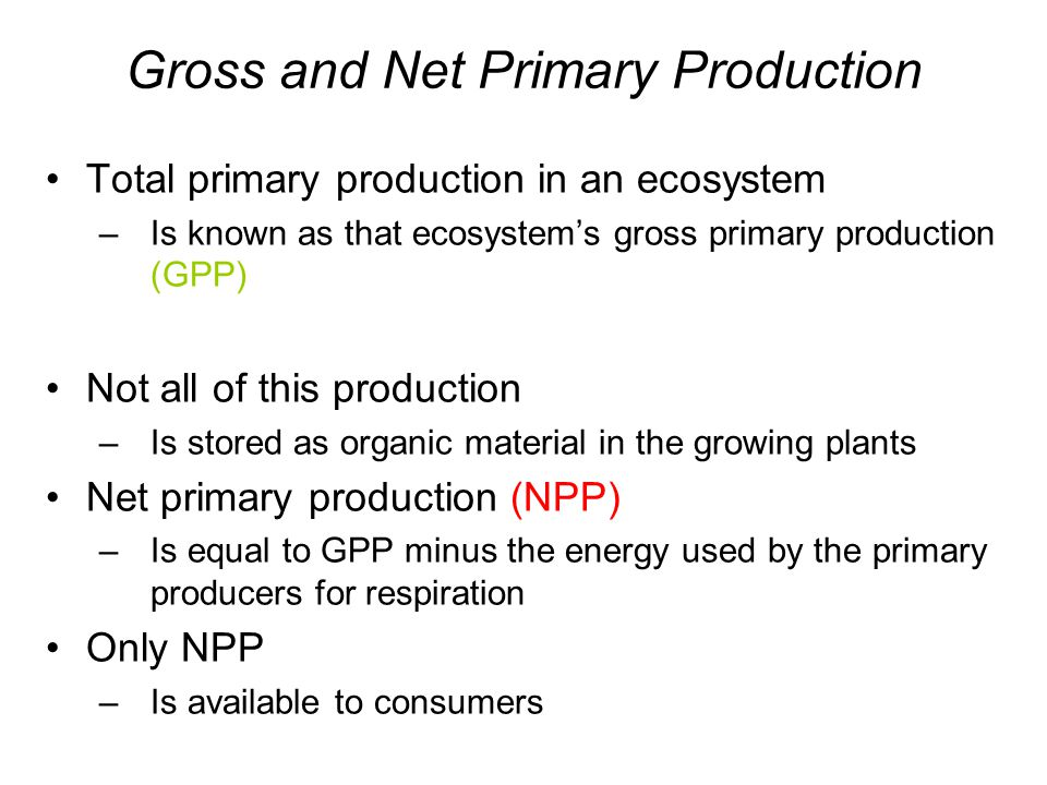 Gross and Net Primary Production Total primary production in an ecosystem –Is known as that ecosystem's gross primary production (GPP) Not all of this production –Is stored as organic material in the growing plants Net primary production (NPP) –Is equal to GPP minus the energy used by the primary producers for respiration Only NPP –Is available to consumers