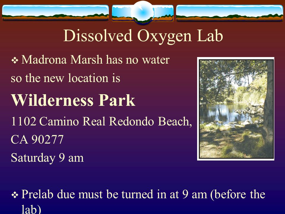 Dissolved Oxygen Lab  Madrona Marsh has no water so the new location is Wilderness Park 1102 Camino Real Redondo Beach, CA 90277 Saturday 9 am  Prelab due must be turned in at 9 am (before the lab)