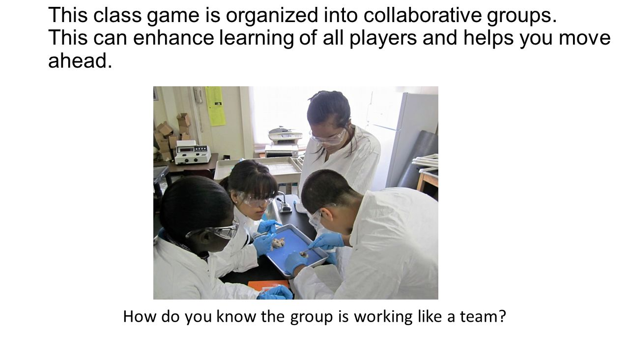 Successful Groups Work together.Work together. Listen to each other.
