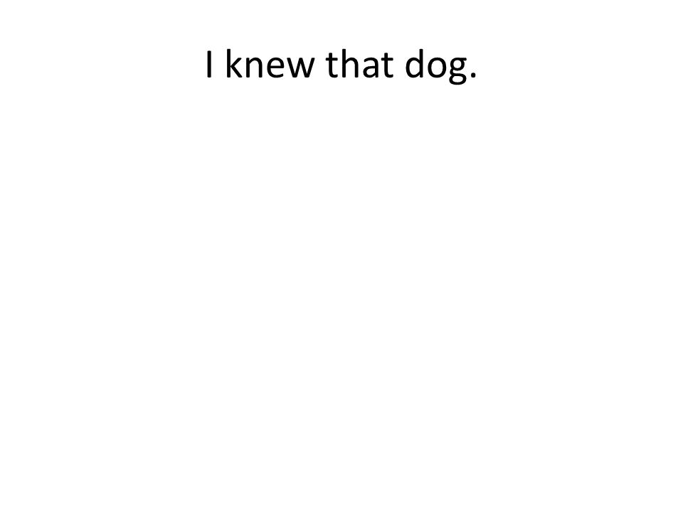 I knew that dog.