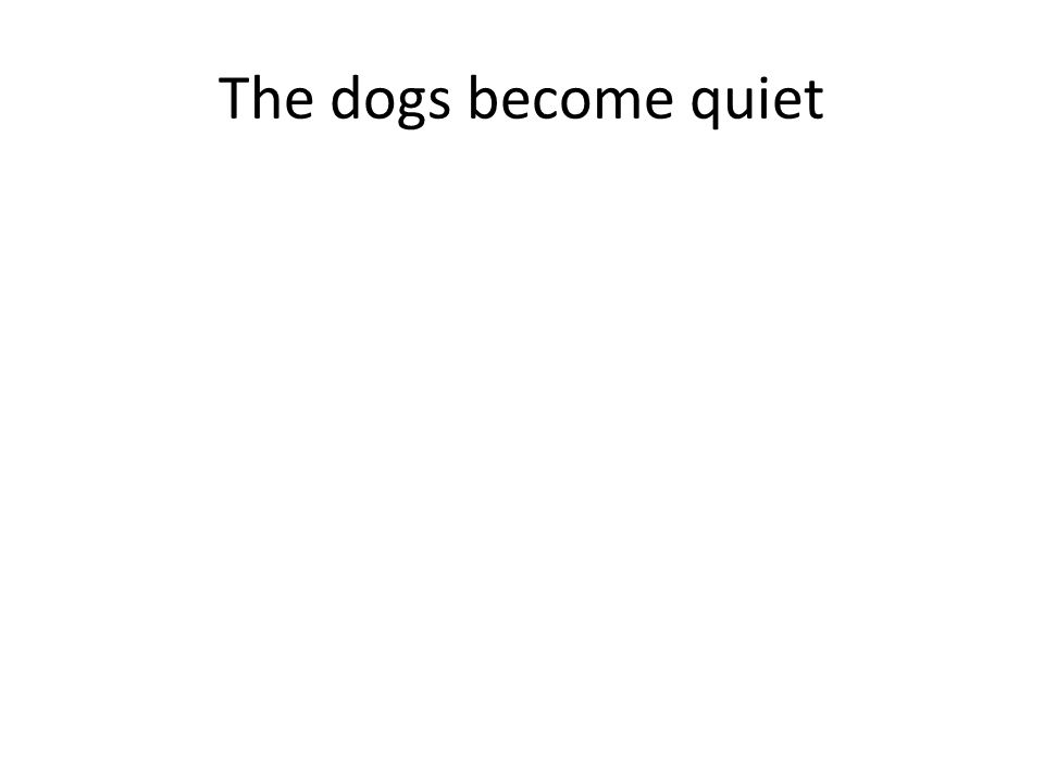 The dogs become quiet