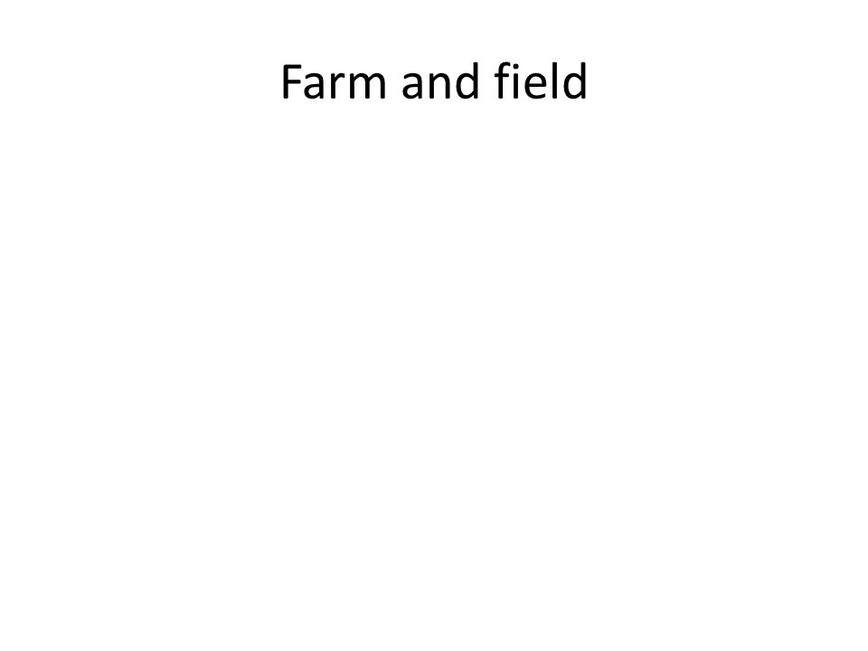 Farm and field