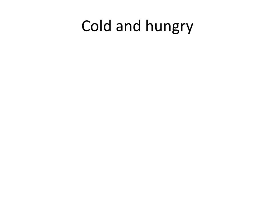 Cold and hungry