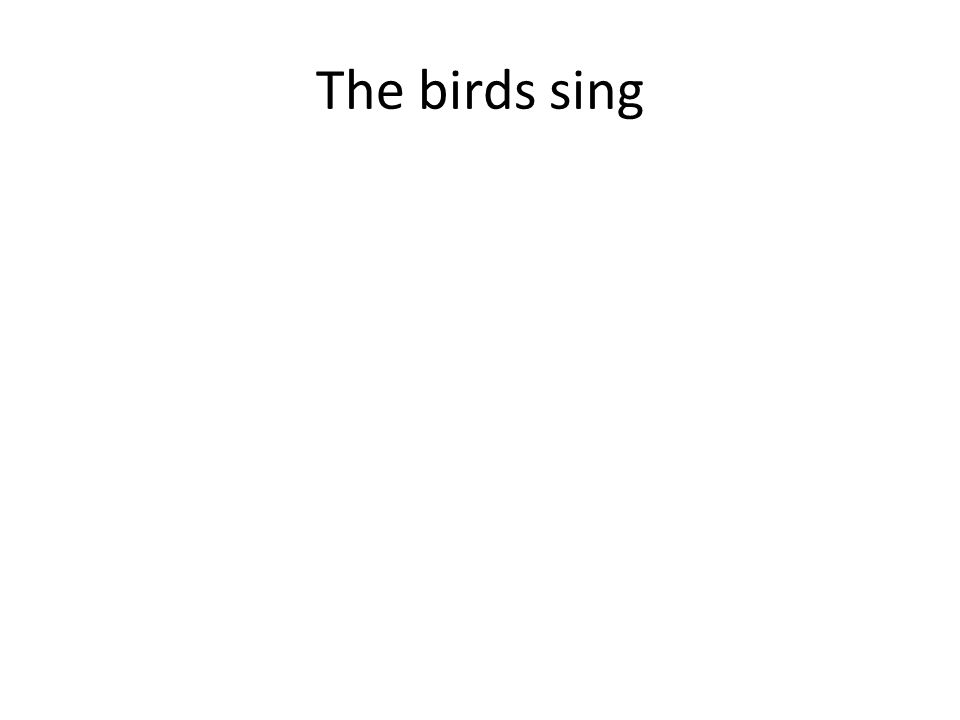 The birds sing