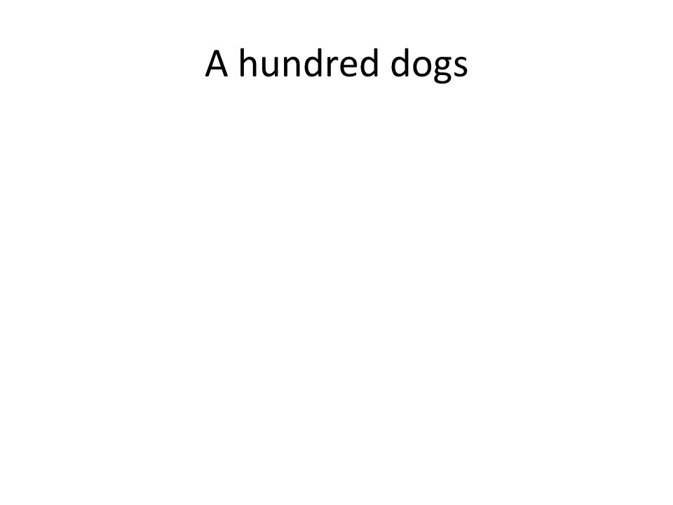 A hundred dogs
