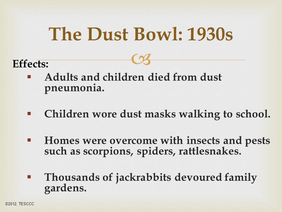  Effects:  Adults and children died from dust pneumonia.  Children wore dust masks walking to school.  Homes were overcome with insects and pests