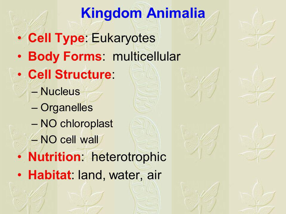 Kingdom Animalia Cell Type: Eukaryotes Body Forms: multicellular Cell Structure: –Nucleus –Organelles –NO chloroplast –NO cell wall Nutrition: heterotrophic Habitat: land, water, air