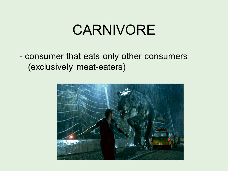 OMNIVORE - consumer that eats both producers and consumers (plants, fungi, and meat)