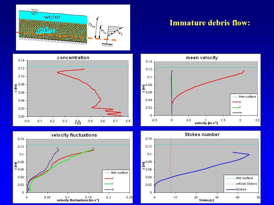 15 Immature debris flow: