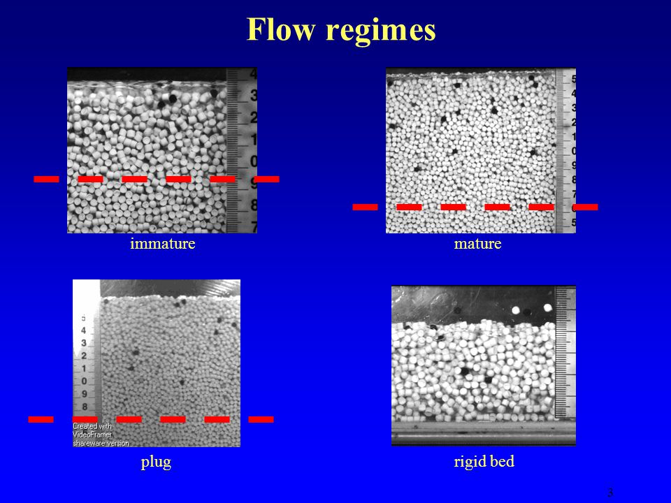 3 Flow regimes immaturemature plugrigid bed