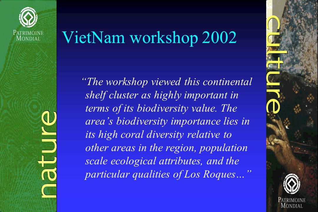VietNam workshop 2002 The workshop viewed this continental shelf cluster as highly important in terms of its biodiversity value.