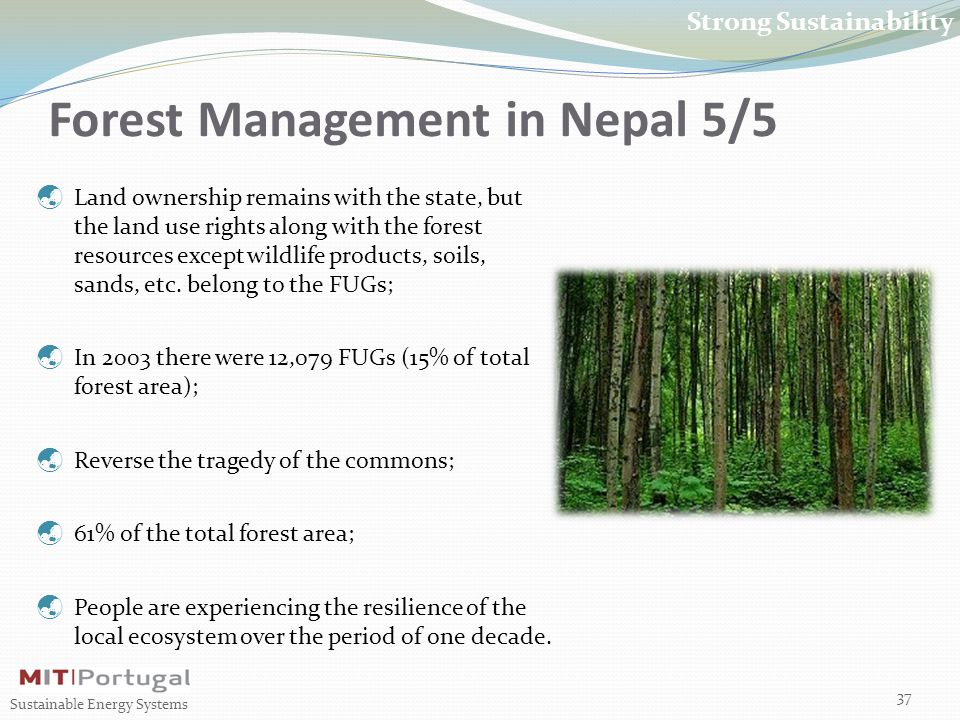 Forest Management in Nepal 5/5 37 Sustainable Energy Systems Strong Sustainability  Land ownership remains with the state, but the land use rights along with the forest resources except wildlife products, soils, sands, etc.