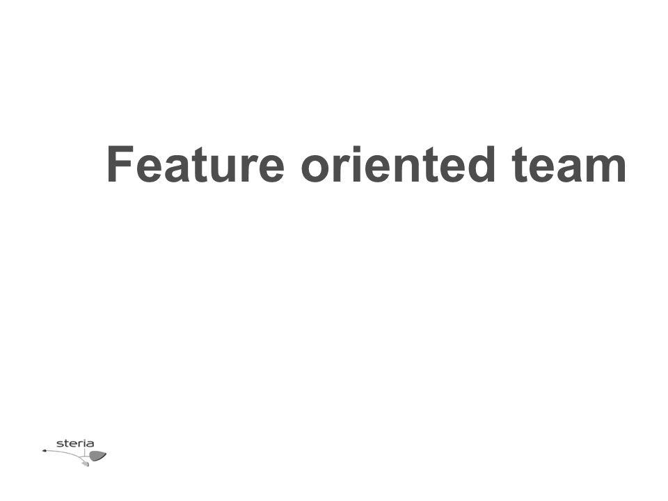 Feature oriented team