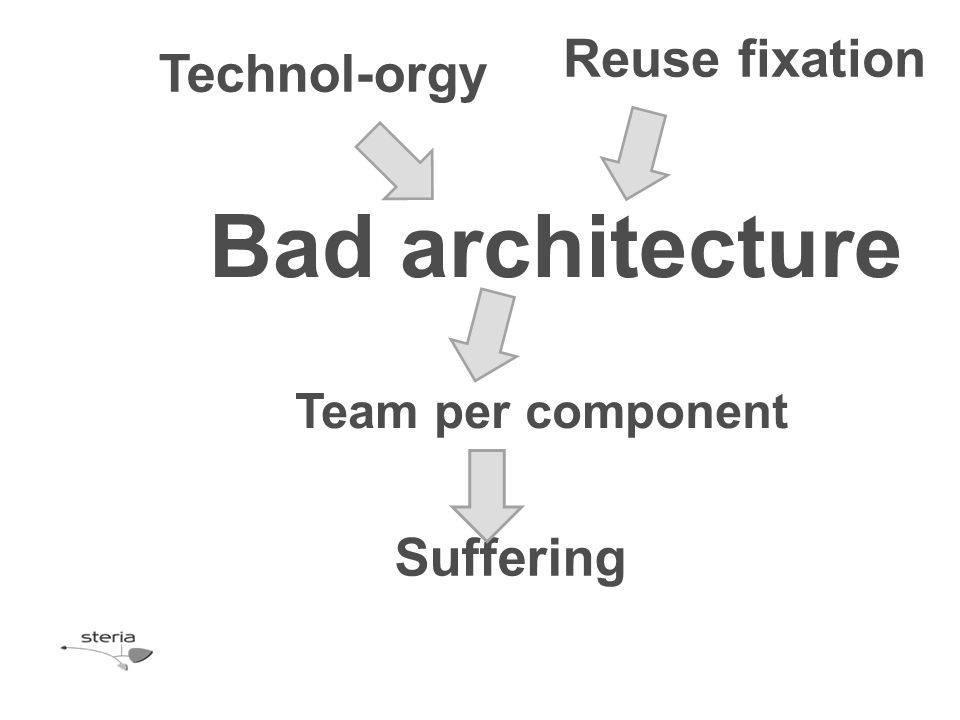 Bad architecture Technol-orgy Reuse fixation Team per component Suffering