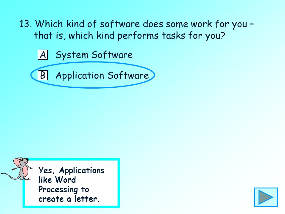 13. Which kind of software does some work for you – that is, which kind performs tasks for you? ASystem Software BApplication Software No – please cli