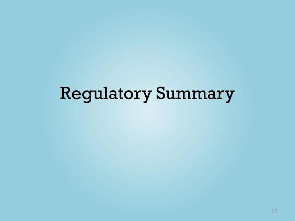 Regulatory Summary 29