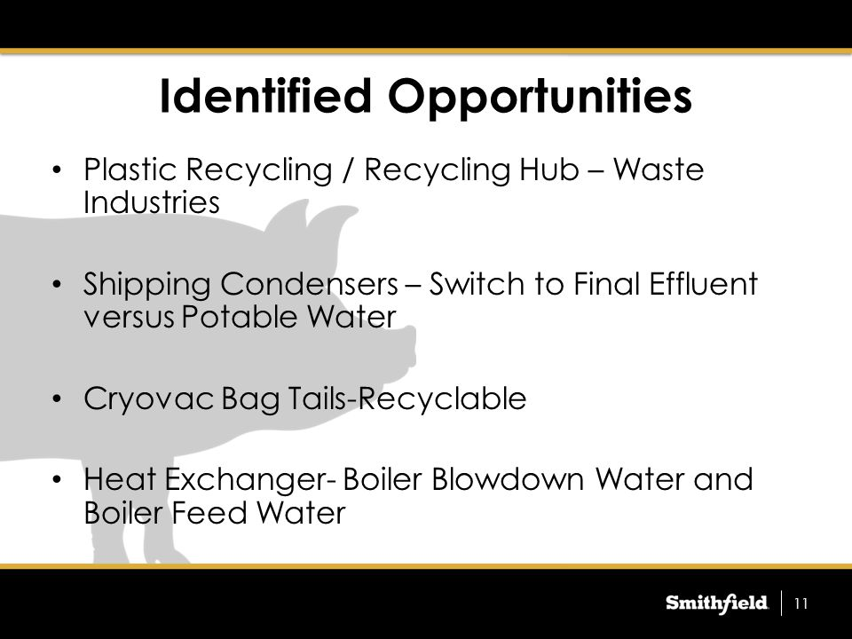 Identified Opportunities Plastic Recycling / Recycling Hub – Waste Industries Shipping Condensers – Switch to Final Effluent versus Potable Water Cryovac Bag Tails-Recyclable Heat Exchanger- Boiler Blowdown Water and Boiler Feed Water 11