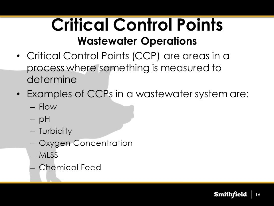 Critical Control Points Wastewater Operations Critical Control Points (CCP) are areas in a process where something is measured to determine Examples of CCPs in a wastewater system are: – Flow – pH – Turbidity – Oxygen Concentration – MLSS – Chemical Feed 16