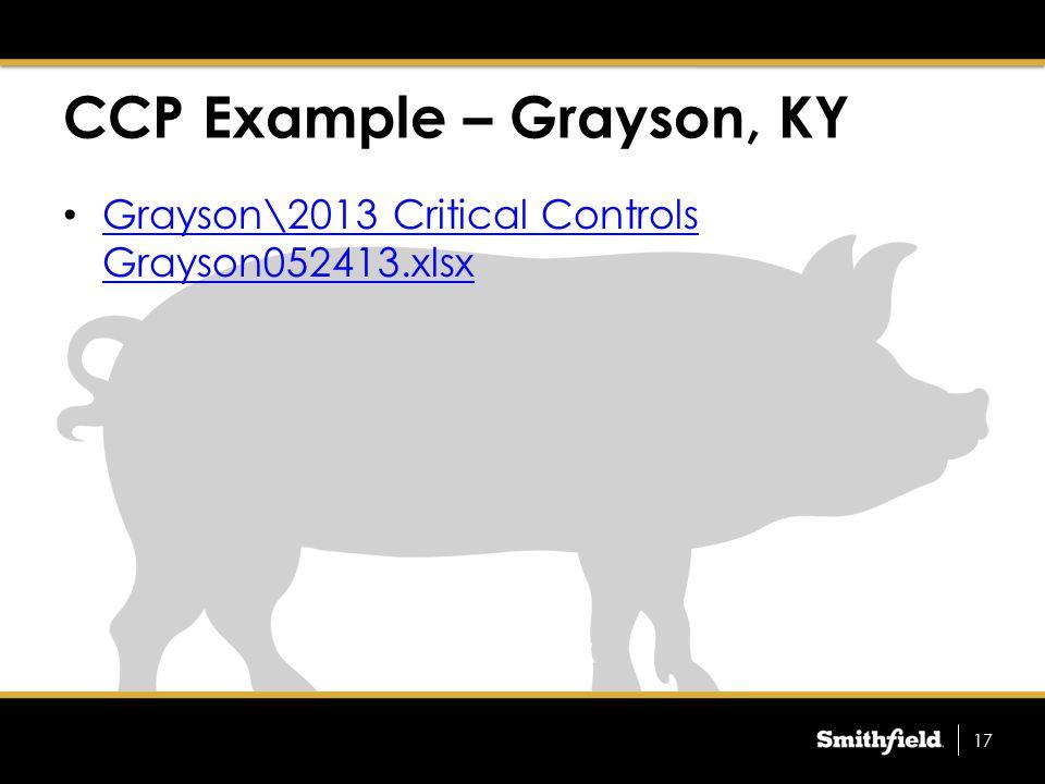 Grayson\2013 Critical Controls Grayson052413.xlsx Grayson\2013 Critical Controls Grayson052413.xlsx CCP Example – Grayson, KY 17