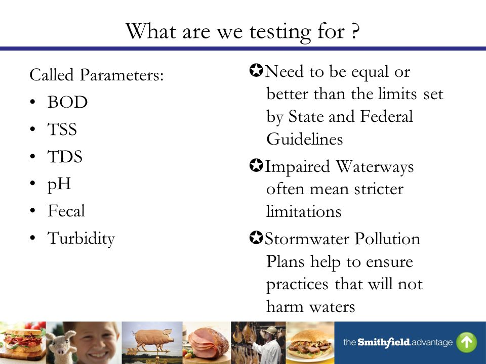 What are we testing for .