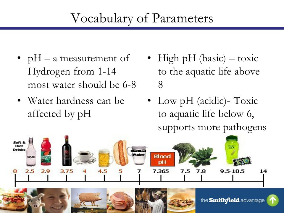 Vocabulary of Parameters pH – a measurement of Hydrogen from 1-14 most water should be 6-8 Water hardness can be affected by pH High pH (basic) – toxic to the aquatic life above 8 Low pH (acidic)- Toxic to aquatic life below 6, supports more pathogens than high pH