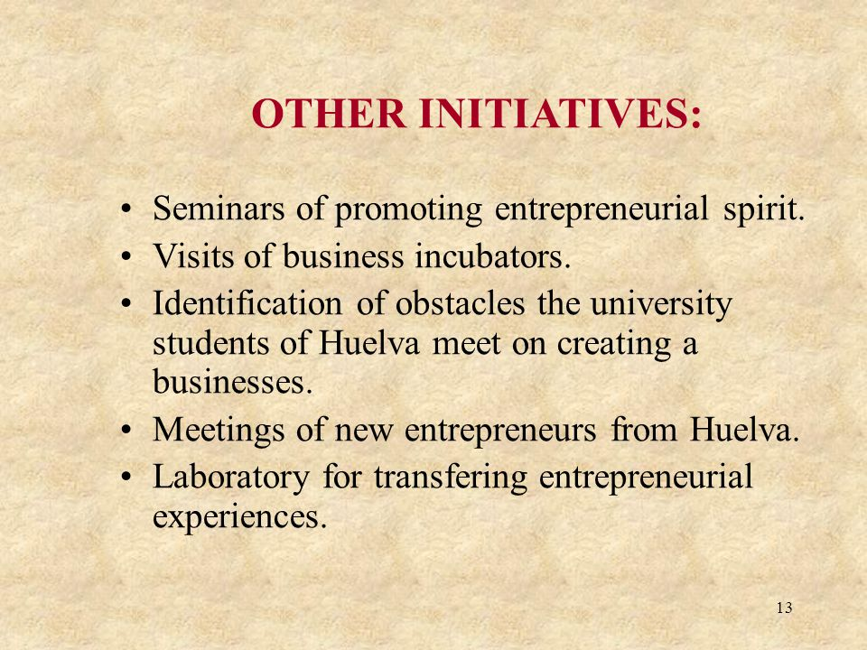 13 OTHER INITIATIVES: Seminars of promoting entrepreneurial spirit. Visits of business incubators. Identification of obstacles the university students