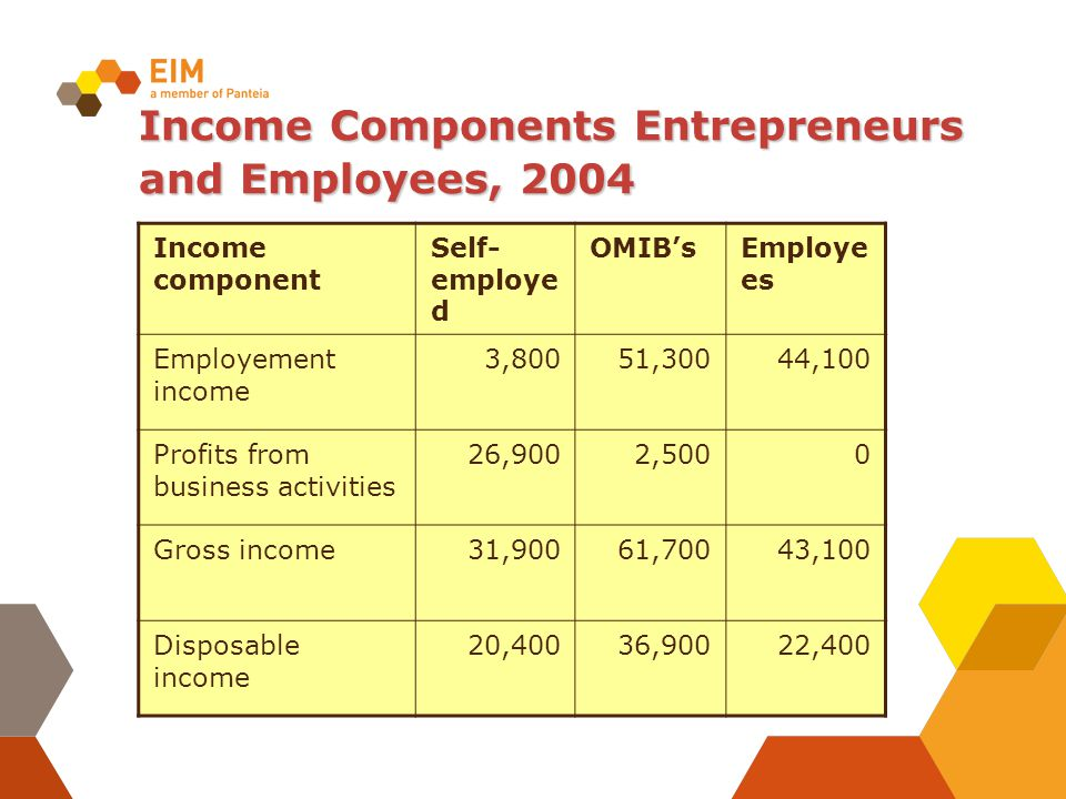 Income Components Entrepreneurs and Employees, 2004 Income component Self- employe d OMIB'sEmploye es Employement income 3,80051,30044,100 Profits fro