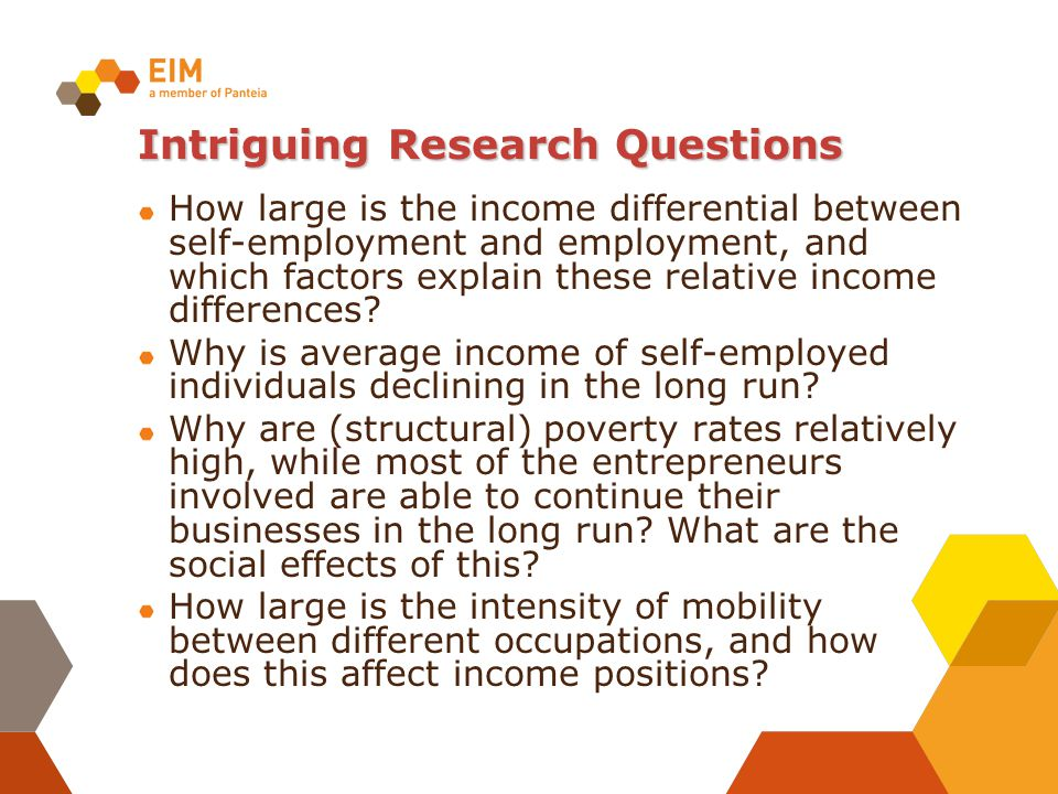Intriguing Research Questions How large is the income differential between self-employment and employment, and which factors explain these relative in