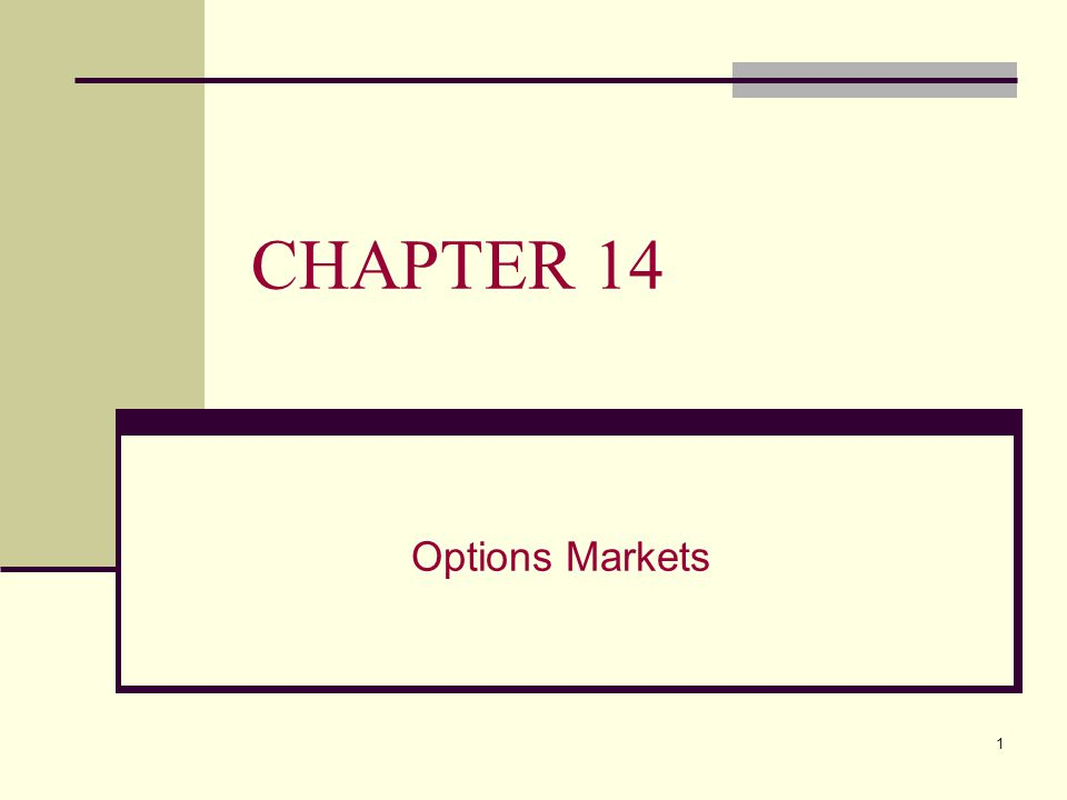 1 CHAPTER 14 Options Markets