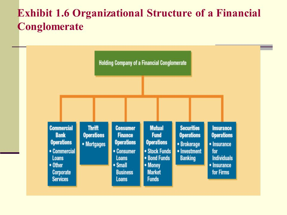 Exhibit 1.6 Organizational Structure of a Financial Conglomerate