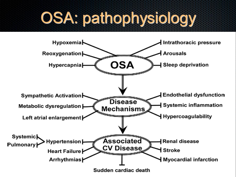 OSA: pathophysiology