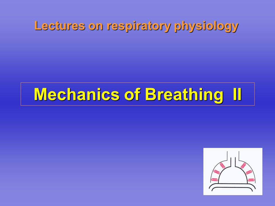 Lectures on respiratory physiology Mechanics of Breathing II