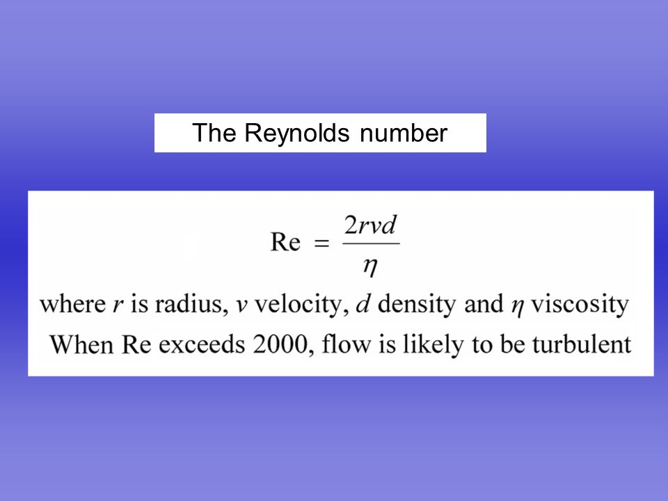 The Reynolds number