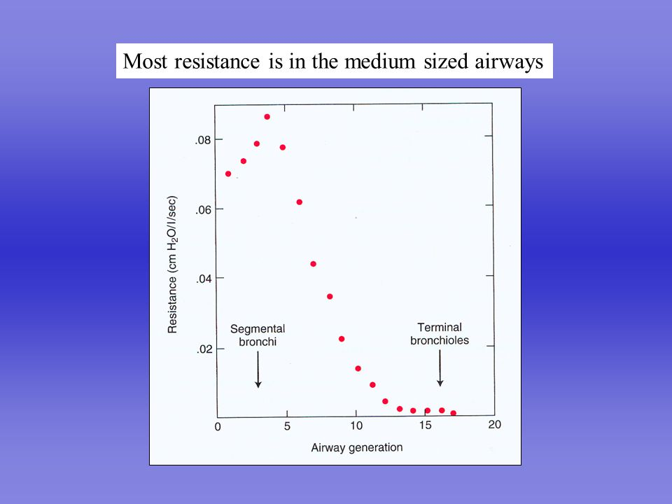 Airway resistance falls with increasing lung volume