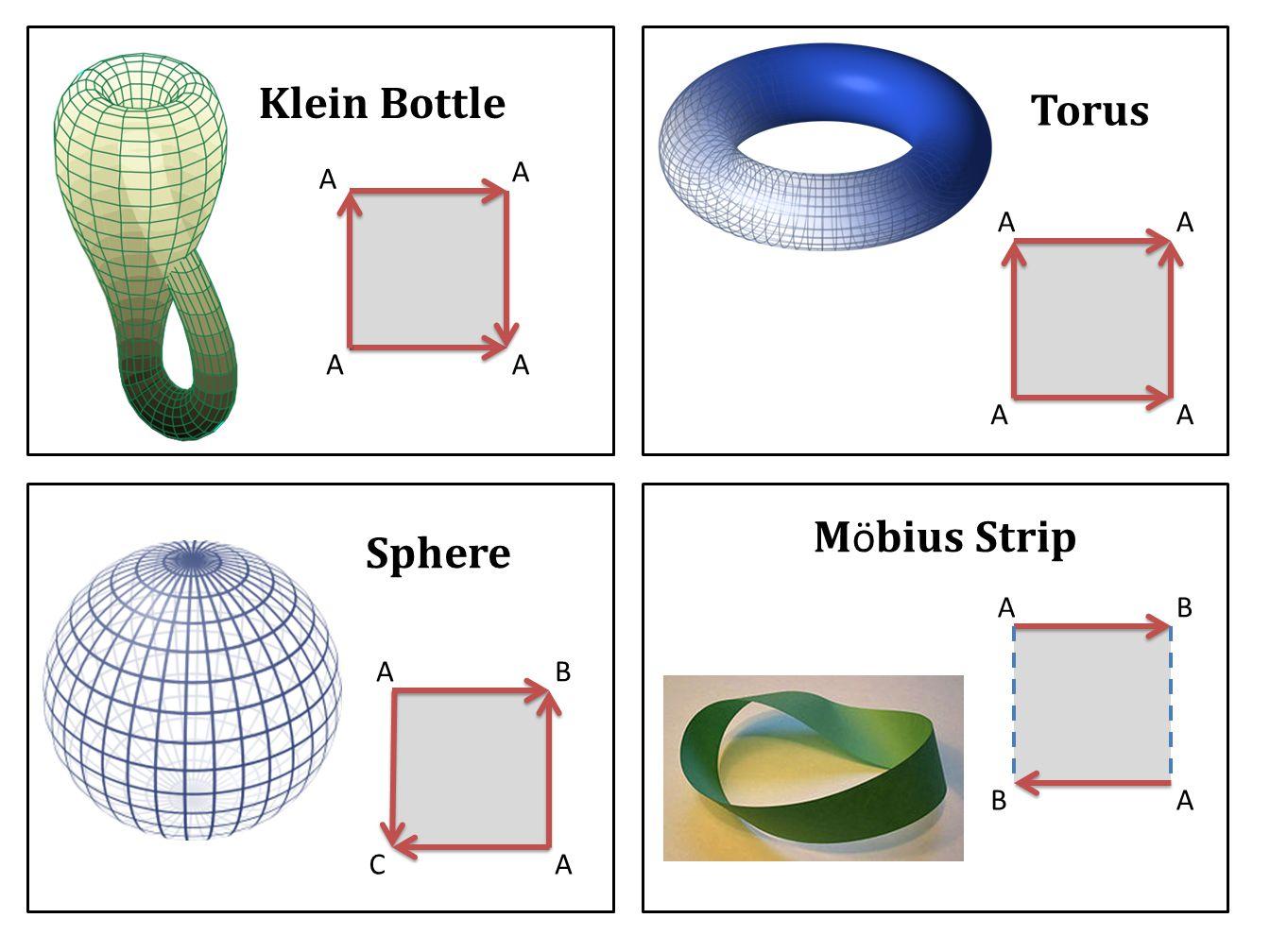Klein Bottle Torus Sphere M ö bius Strip A A AA AA AA AB AC AB AB