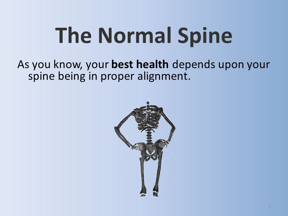 2 The Normal Spine As you know, your best health depends upon your spine being in proper alignment.