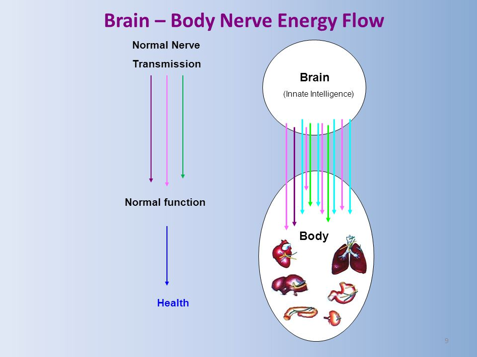 9 Brain (Innate Intelligence) Body Normal Nerve Transmission Normal function Health Brain – Body Nerve Energy Flow