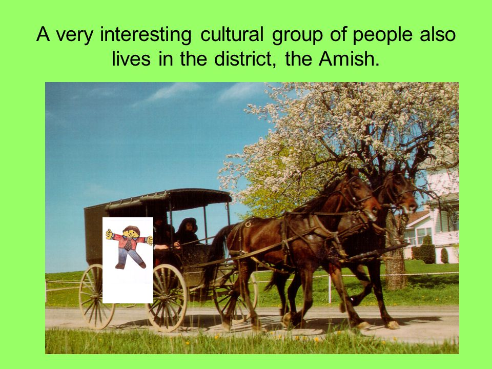 A very interesting cultural group of people also lives in the district, the Amish.