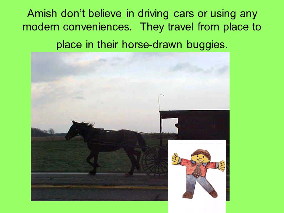 Amish don't believe in driving cars or using any modern conveniences.