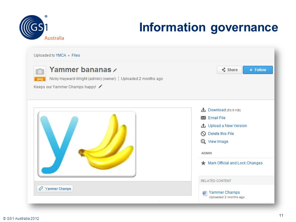 © GS1 Australia 2012 Information governance 11