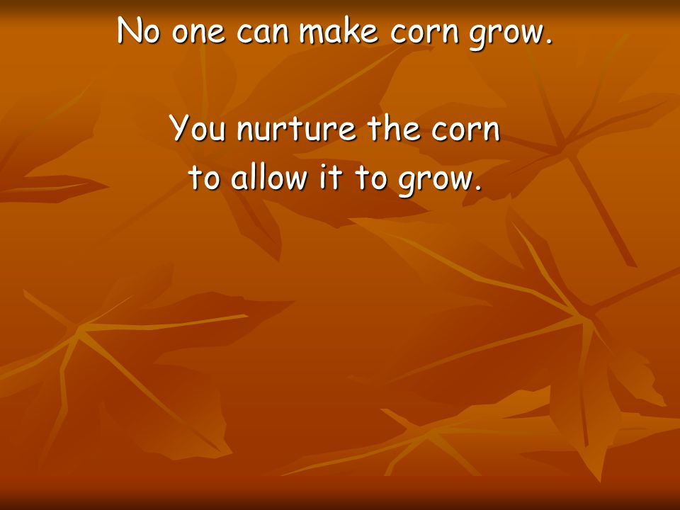 No one can make corn grow. You nurture the corn to allow it to grow.