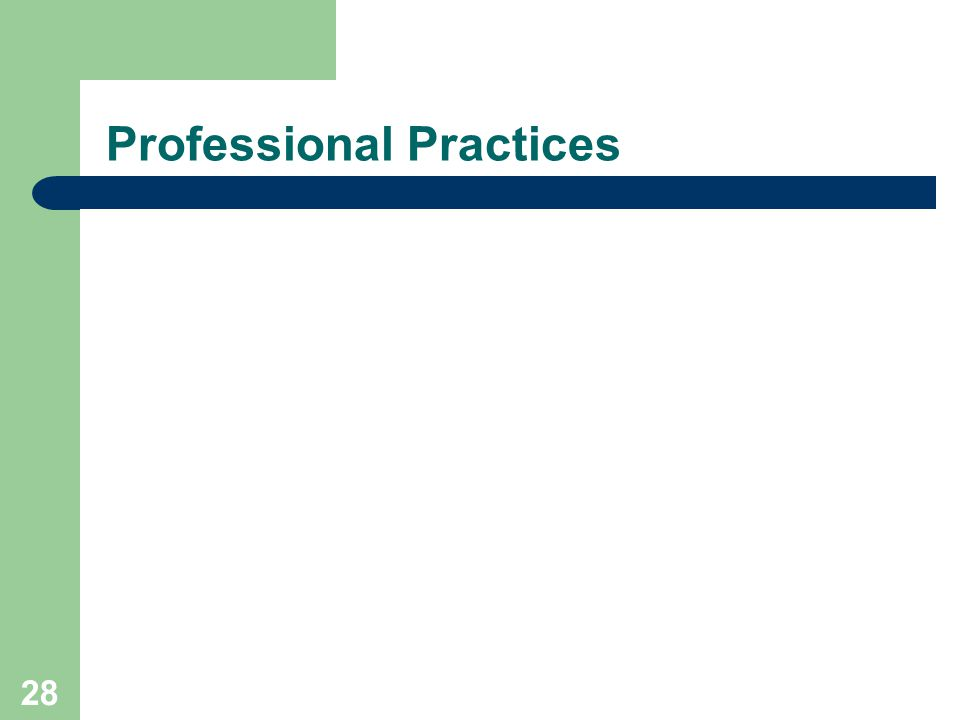 28 Professional Practices