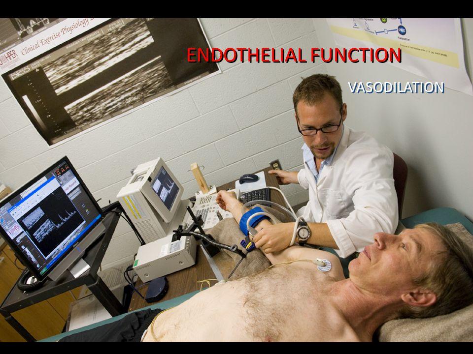 ENDOTHELIAL FUNCTION VASODILATION