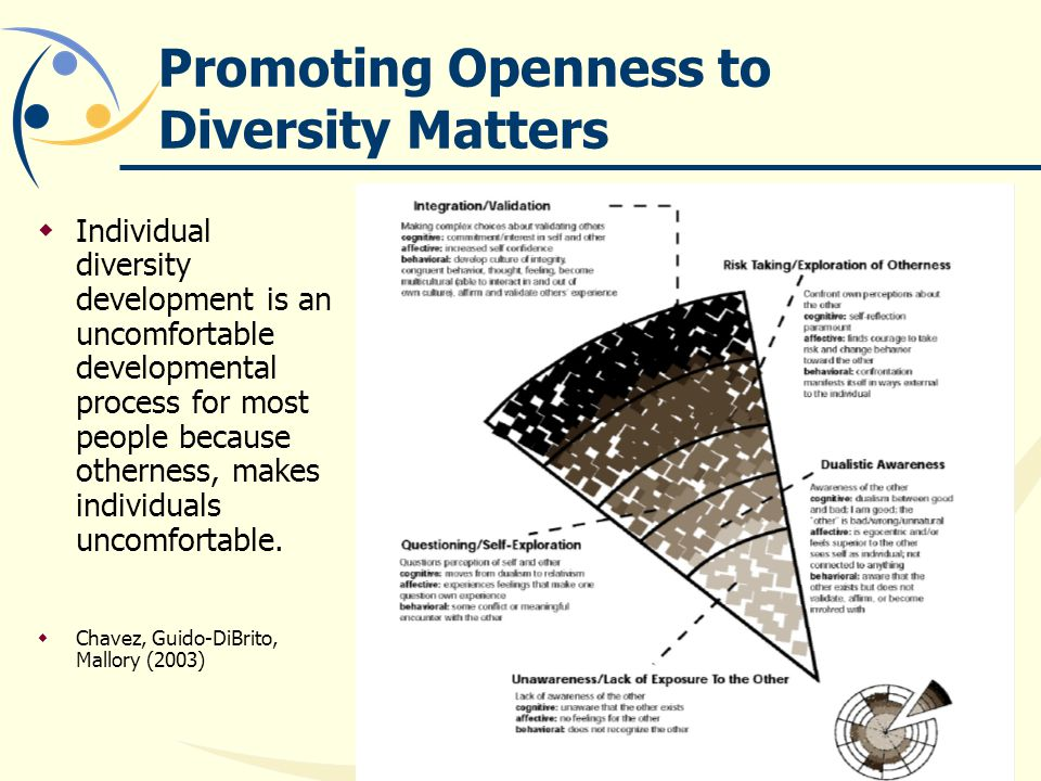 Promoting Openness to Diversity Matters  Individual diversity development is an uncomfortable developmental process for most people because otherness, makes individuals uncomfortable.
