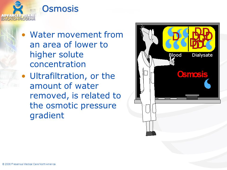 © 2006 Fresenius Medical Care North America Osmosis Water movement from an area of lower to higher solute concentration Ultrafiltration, or the amount