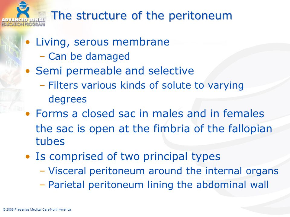 © 2006 Fresenius Medical Care North America The structure of the peritoneum Living, serous membrane –Can be damaged Semi permeable and selective –Filt