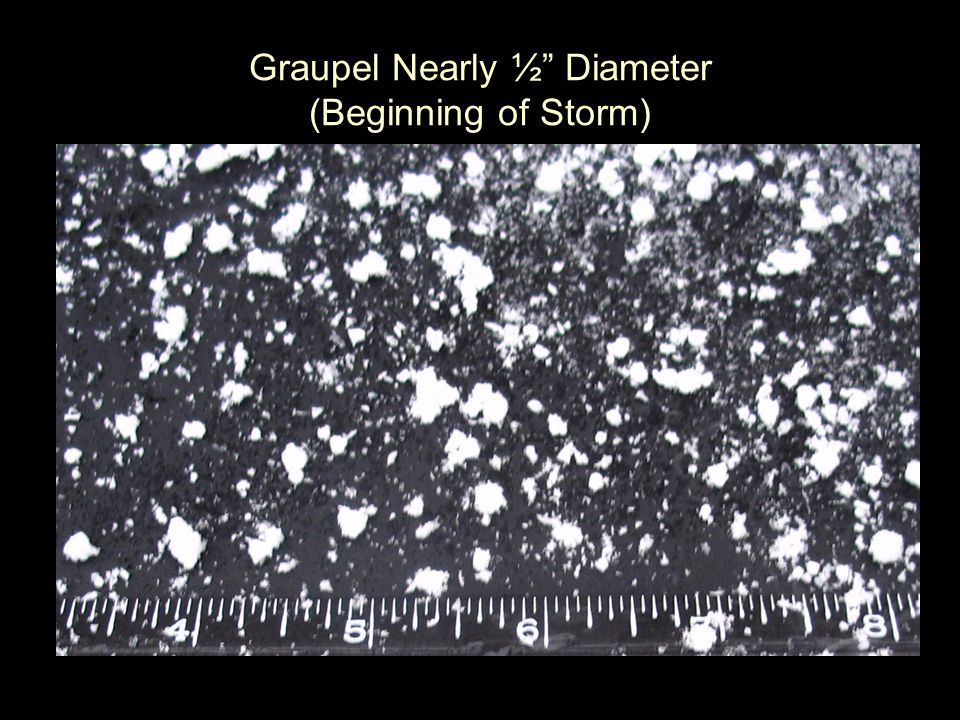 Graupel Nearly ½ Diameter (Beginning of Storm)