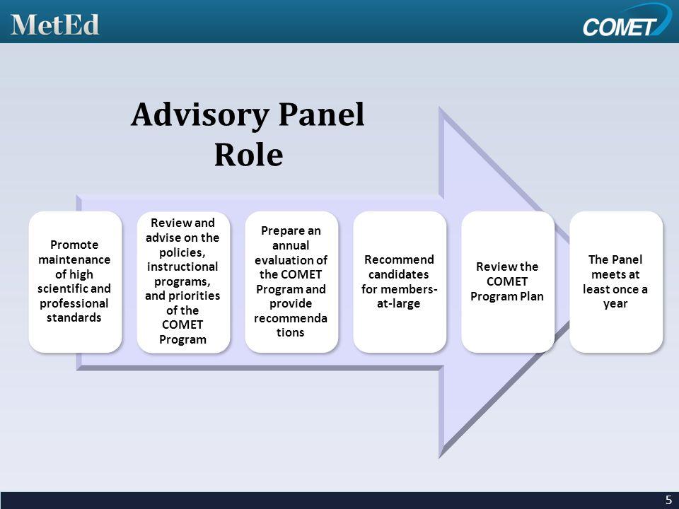 Advisory Panel Role 5