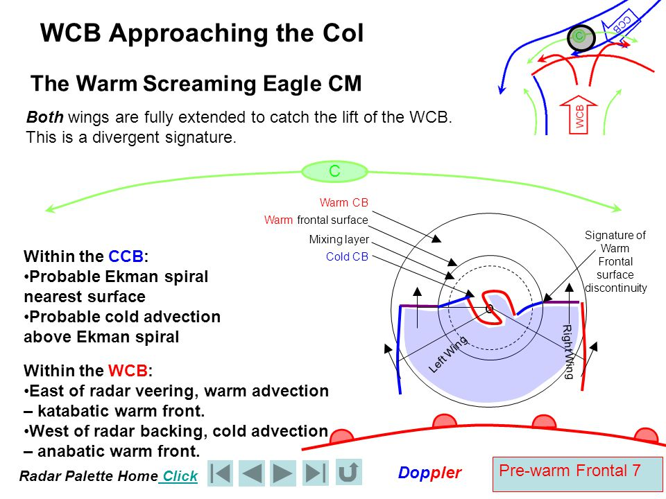Radar Palette Home Click Doppler Pre-warm Frontal 28 WCB Doppler Diagnosis – Diagnosis on the Gull Wing A The Right Eagle Wing A is the radar site BC is backing with height indicative of cold advection.